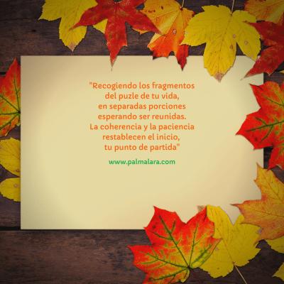 poema fragmento del puzle de tu vida frases para la reflexion micropoemas micropoesia frases bonitas