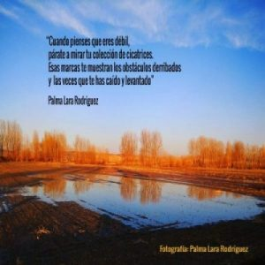 poema cicatrices palma lara rodriguez poesia para la reflexion frases para la reflexion micropoemas micropoesia poetas jovenes espana