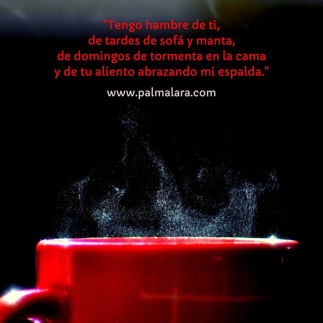 poemas Palma Lara poetas de instagram poemas de amor frases bonitas noche de poemas
